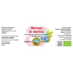 Nettare di mirtillo 200ml